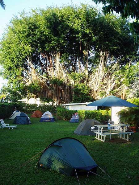 Arnotts lodge campsite