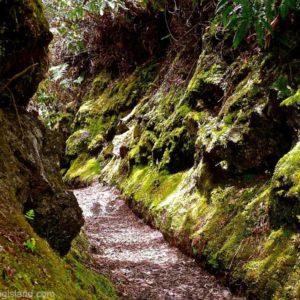 Halema'uma'u trail in the Hawaii Volcanoes National Park