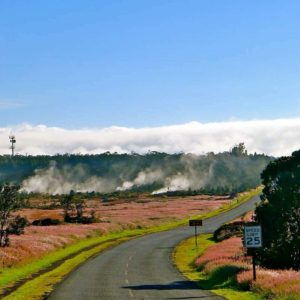 Steam vents in the Hawaii Volcanoes National Park