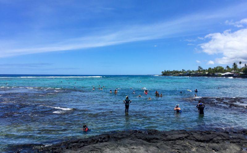 people snorkeling at Kahalu'u bay