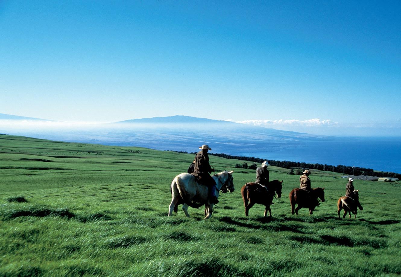 Kohala, North Kohala and the Kohala Coast