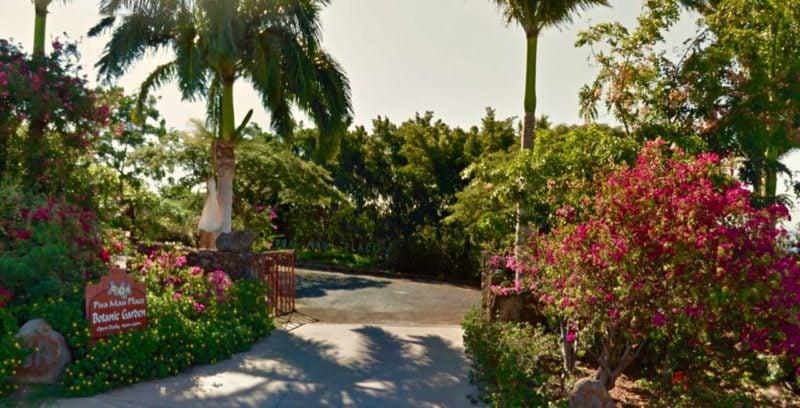 pua mau, botanical garden, big island, hawaii