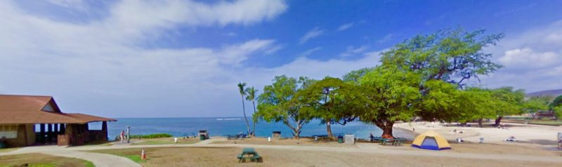 spencer beach park, whale watching, big island, hawaii